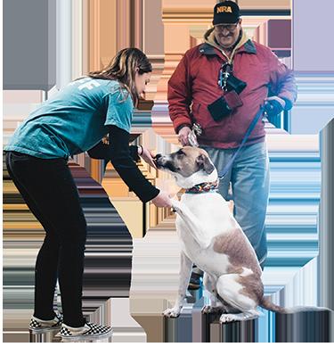 Puppy Shake - Greater Androscoggin Humane Society