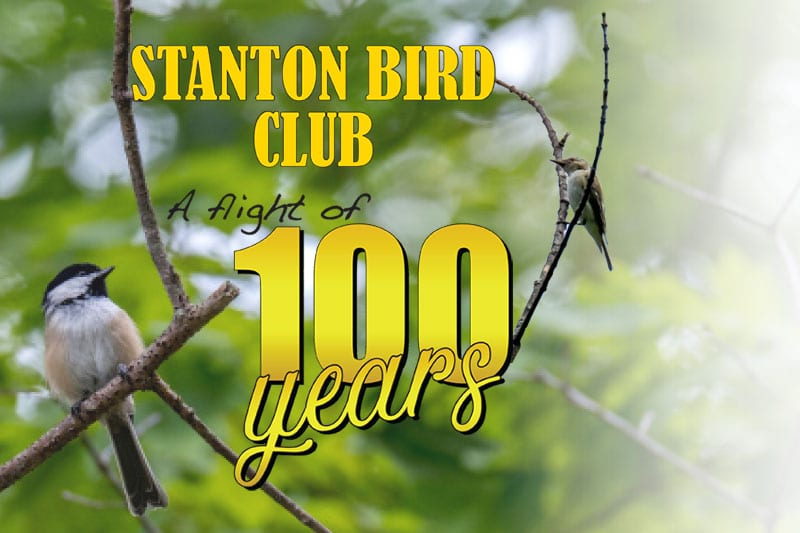 Stanton Bird Club – A Flight Of 100 Years